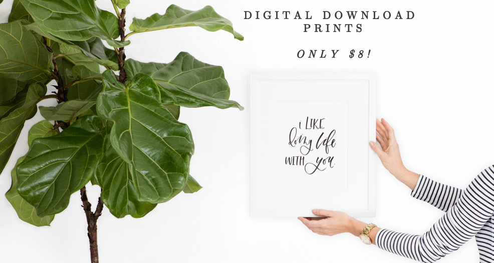 Digital Downloads Available - Lauren Heim Shop